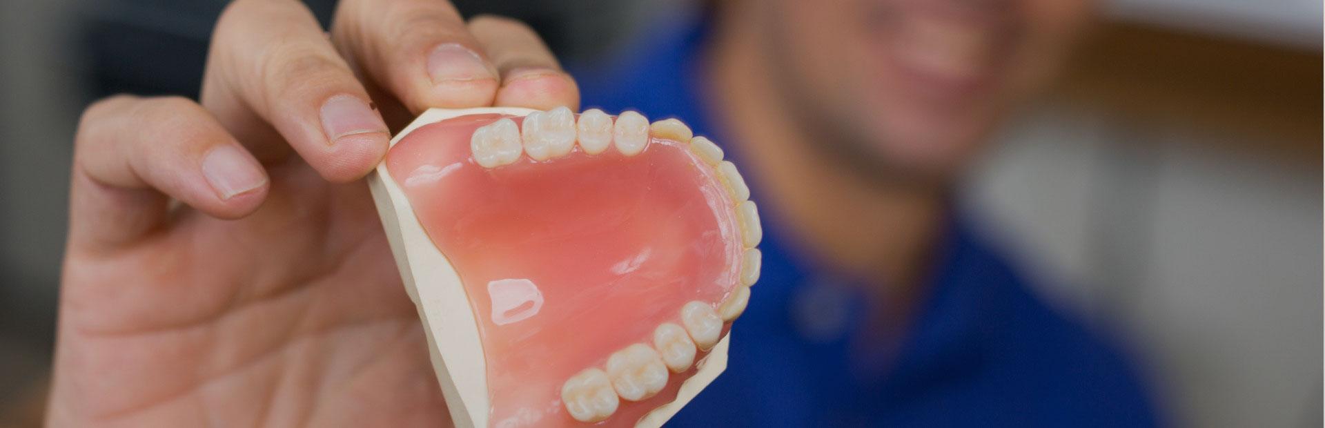 Dentist showing denture model